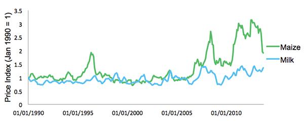 Maize vs. Milk (USD prices since 1990 - siz month moving average)