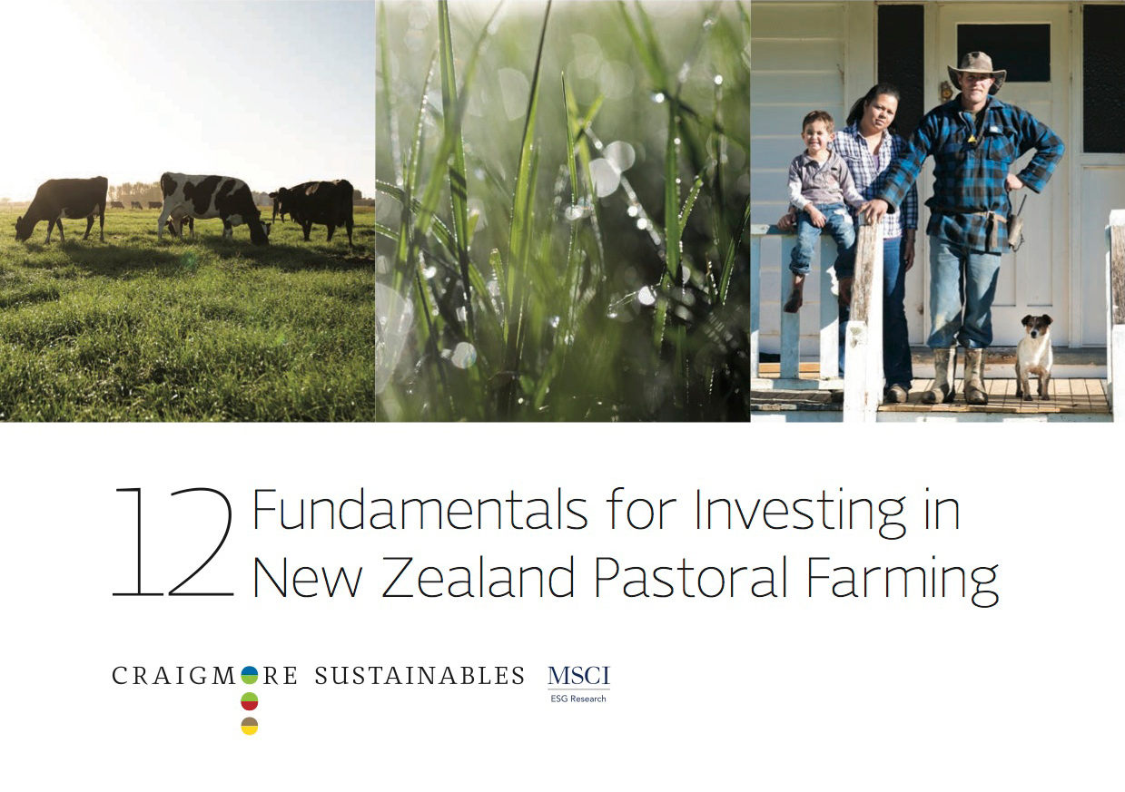 12 Fundamentals for Investing in New Zealand Pastoral Farmland