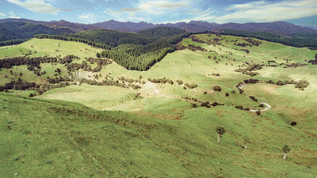 Craigmore farmland